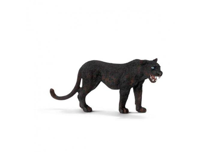 Zvířátko - černý panter