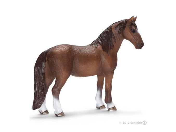Zvířátko - kobyla koně tenesského