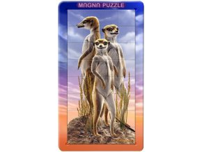 1076103970 piatnik 3d magneticke puzzle surikaty 32 dilku[1]