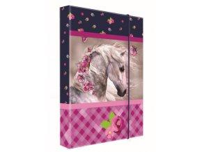 Box na sešity A5 Junior kůň