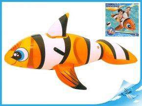 Ryba klaun 147x94cm s úchyty v krabičce