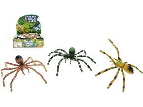 Pavouk ohebné nohy