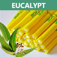 Ušní a tělové svíce HOXI s Eucalyptem