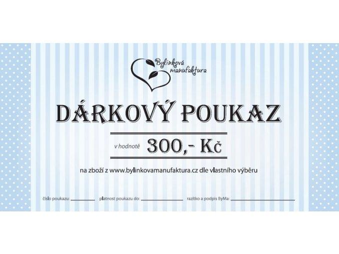 DP 300