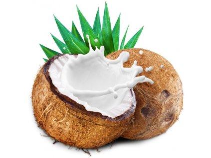 Kokosové mléko sušené 250g