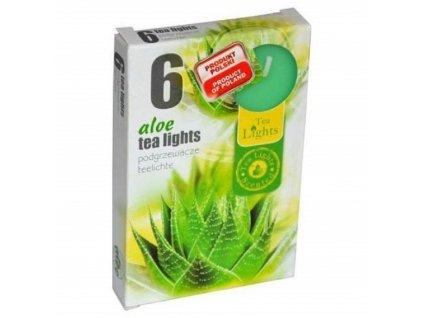 Čajové vonné svíčky 6 ks Aloe