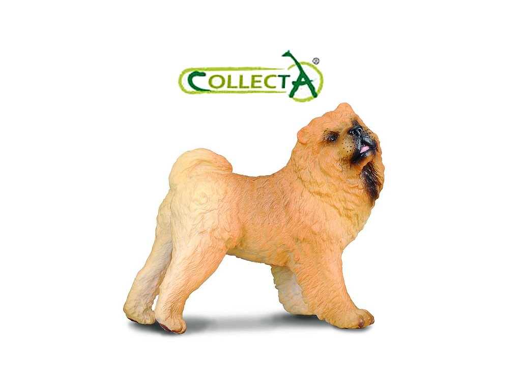 Collecta Pes (1836) Chow Chow 7cm