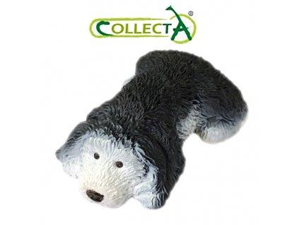 Collecta Pes (0679) Staroanglický Ovčák štěně 4,5cm
