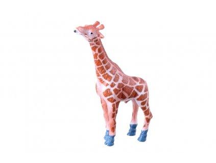 žirafa (2)