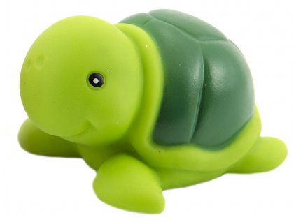 želva1