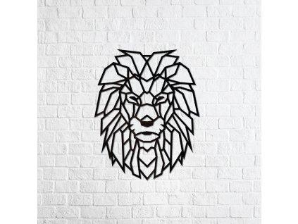lion 01 01