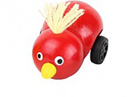 Ptáček na setrvačník
