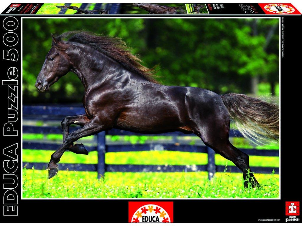Puzzle Černý kůň 500 dílků
