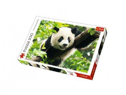 Puzzle Panda 500 dílků