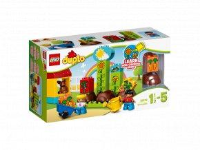 LEGO® 10819 DUPLO® Moje první zahrádka
