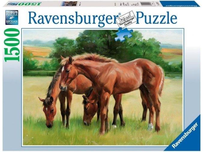 puzzle Koně v trávě 1500d, Ravensburger