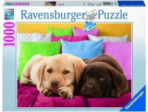 puzzle Blízký přítel 1000d, Ravensburger