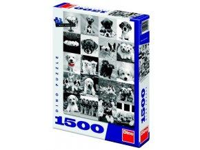 Puzzle PSI 1500d 1