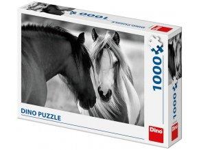 Dino Čenobílí koně 1000 dílků