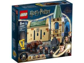 LEGO Harry Potter 76387 Bradavice: setkání s Chloupkem