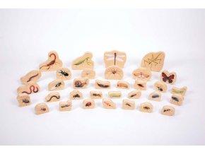 Dřevěné figurky hmyz - Wooden Minibeast