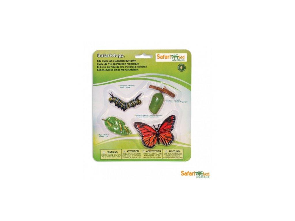 Safari Ltd. | Životní cyklus - Motýl