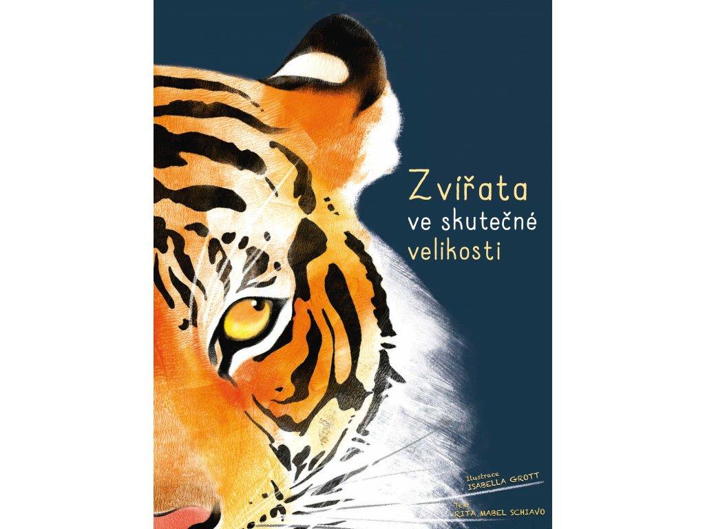 Rita Schiavo   Zvířata ve skutečné velikosti