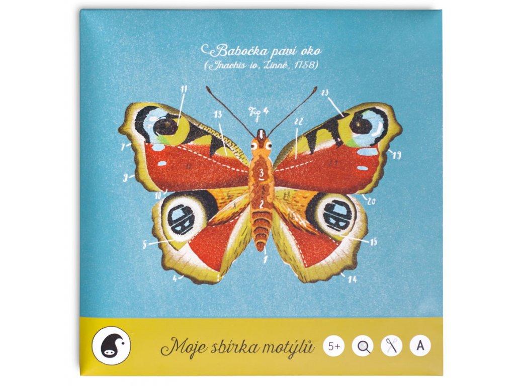 Pipasik Moje sbirka motylu 1