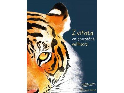 Rita Schiavo | Zvířata ve skutečné velikosti