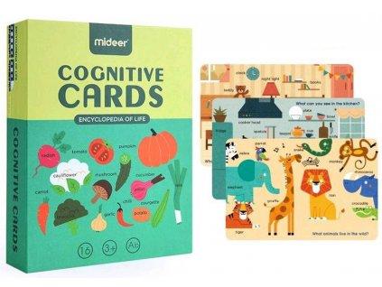 2041 kognitivni karty 1