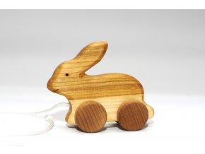 Zajac na kolieskach - Natur