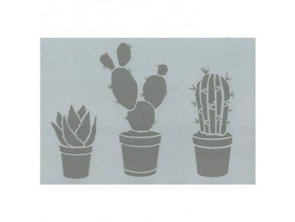 kaktus sukulent plastova sablona