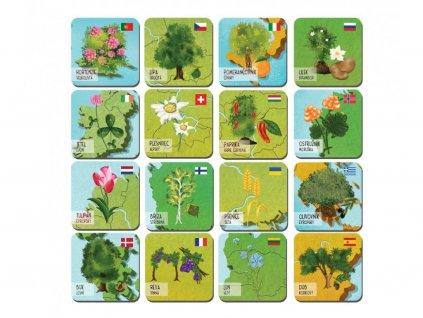 87 92 magnetky evropska flora