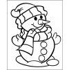 vyr 243 snehulak12x15