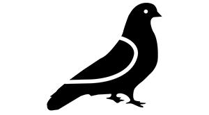 Zábrany proti holubům