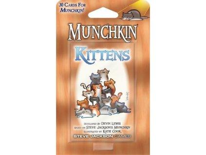 munchkin kittens 2