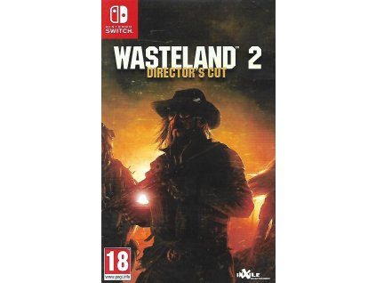 WASTELAND 2 DIRECTOR'S CUT (SWITCH bazar)