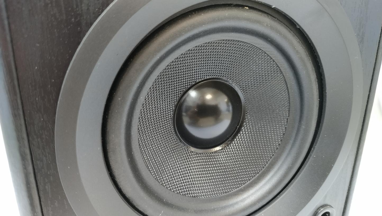 Dual LS 100 Active monitor