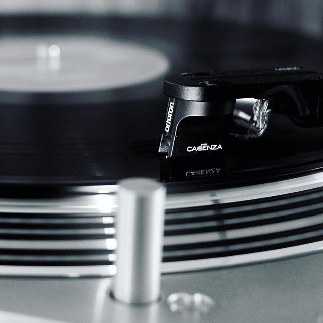 Ortofon Cadenza Black + Ortofon DS-3