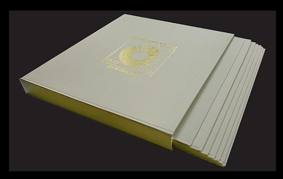 Simply Analog - DIVIDERS DE LUXE VINYL RECORDS BOXSET Barevné provedení: černé
