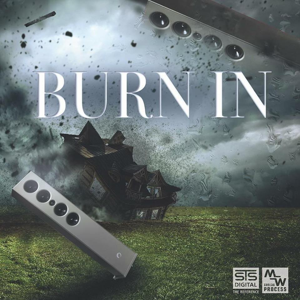 STS Digital - BURN-IN