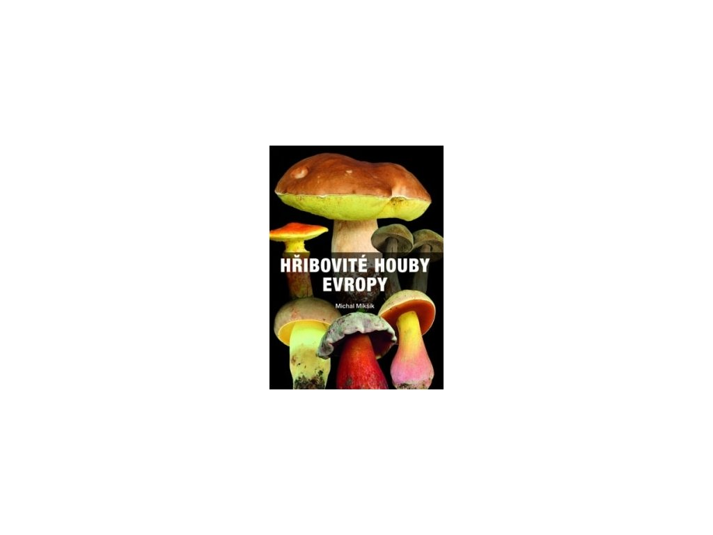 kniha hribovite houby evropy min