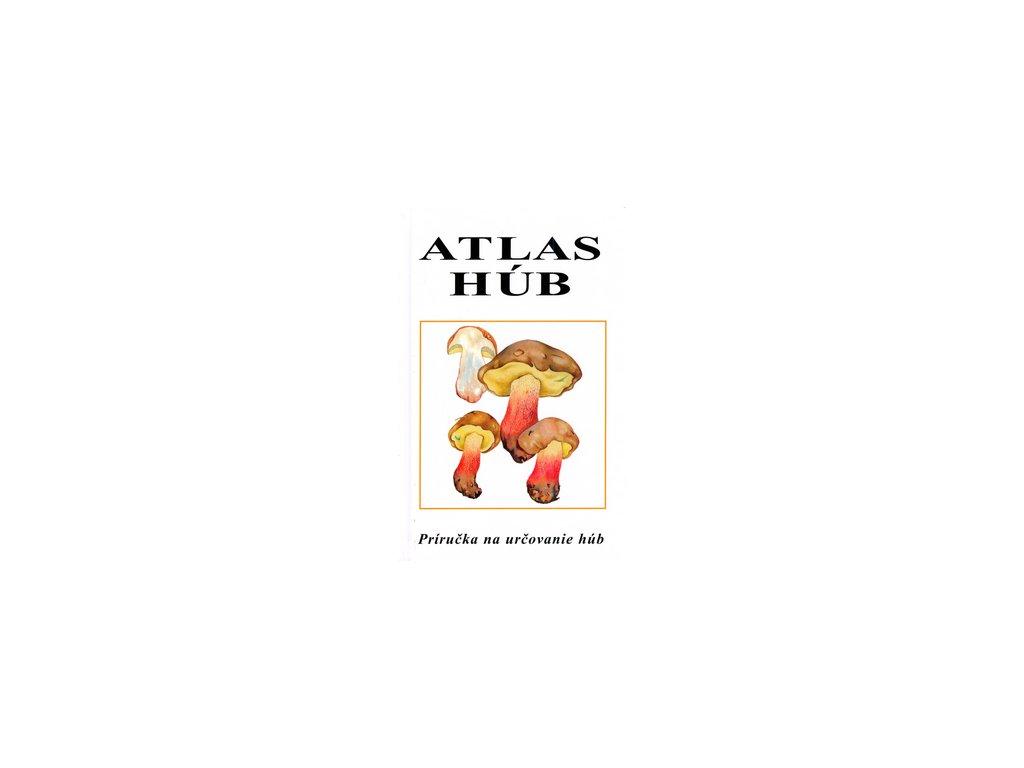 Atlas húb, M. Smotlacha