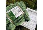 Dravý roztoč proti škůdcům v sadech T-Pyri