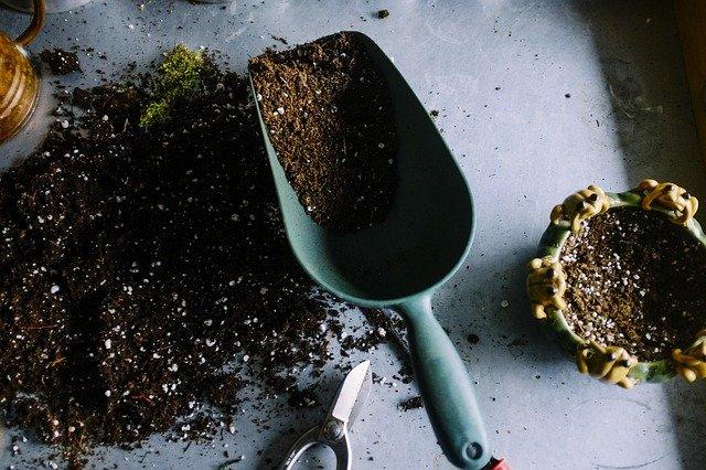 gardening-690940_640