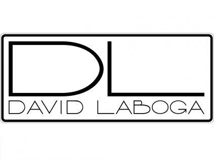 DLlogo