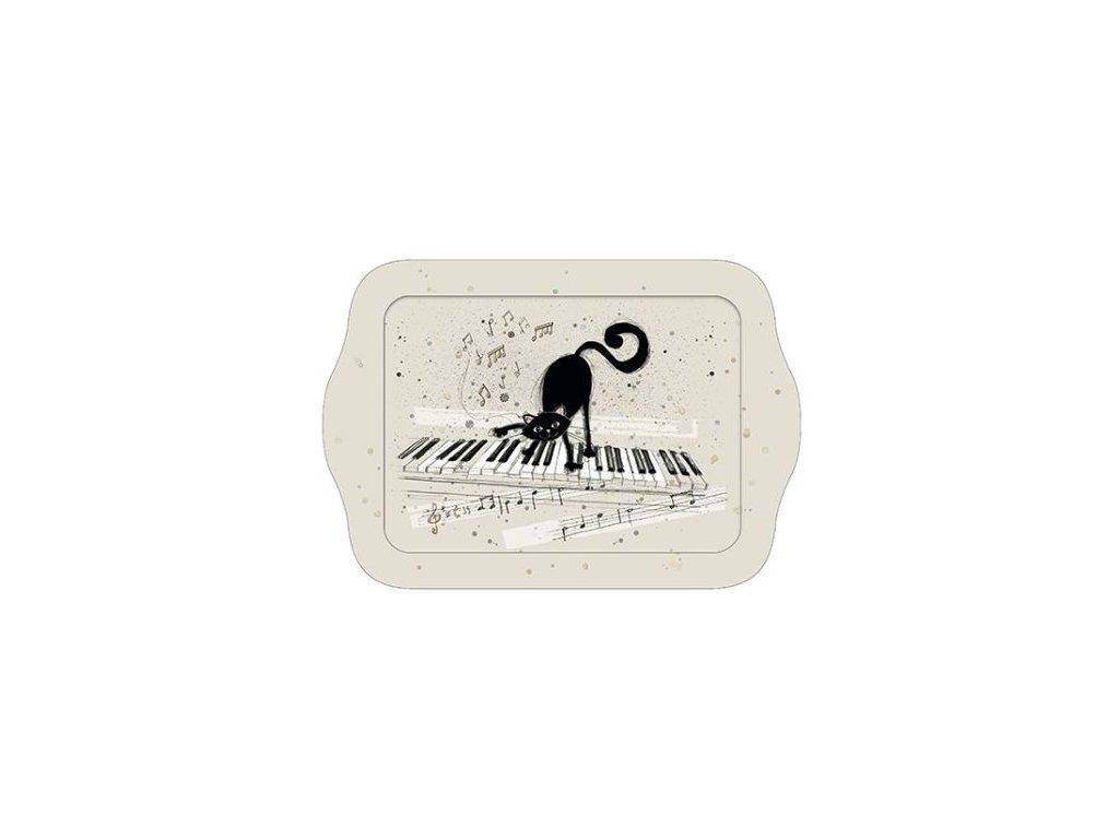TÁCEK kočka na klaviatuře
