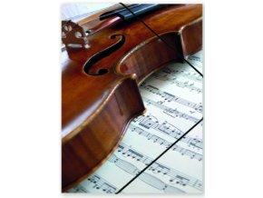 Desky hudební s houslemi, partitura, noty, housle, violin, desky na noty
