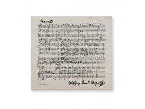 hudební houbová utěrka Mozart