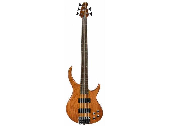 BaCH-5 NAG - přírodní baskytara